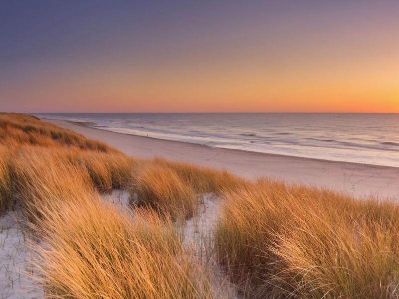 mooiste duinen van nederland